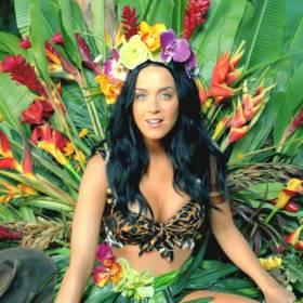 Policjanci użyli piosenki Katy Perry, by stłumić protest