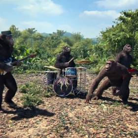 Planeta Małp w teledysku Coldplay. Zobacz zwiastun!