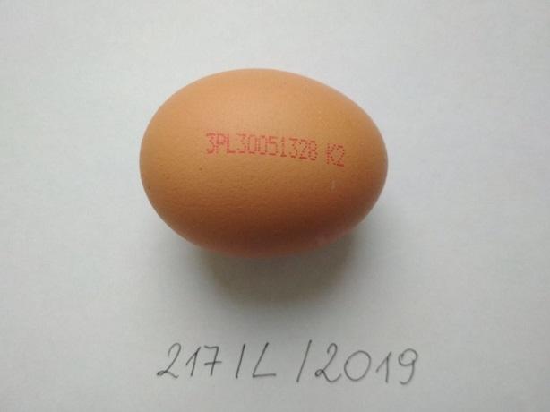 Salmonella w kolejnej partii jaj z Biedronki! Jest ostrzeżenie GIS