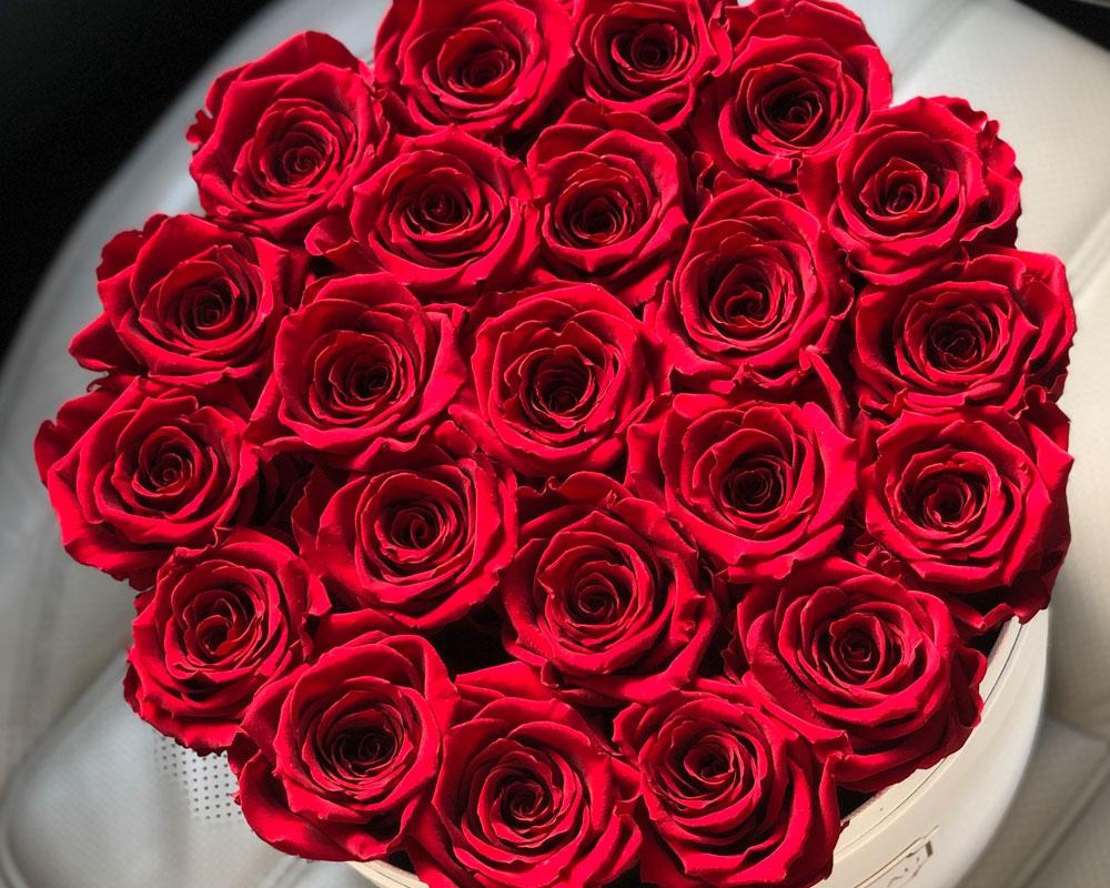 Dlaczego Kwiaty To Idealny Pomysl Na Prezent Ciekawostki Maxxx News Rmf Maxxx