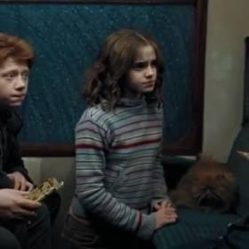 """Ukryta scena intymnego zbliżenia w """"Harrym Potterze""""?! To nagranie to hit! [WIDEO]"""