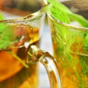 Oczyszczenie organizmu z toksyn? 5 ziół, które mogą w tym pomóc