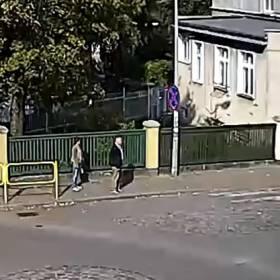 Policjanci potrącili psa. Oto, co zrobili później