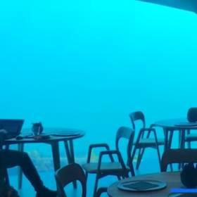 """Podwodna restauracja """"Under"""" już otwarta. Wnętrza robią wrażenie!"""