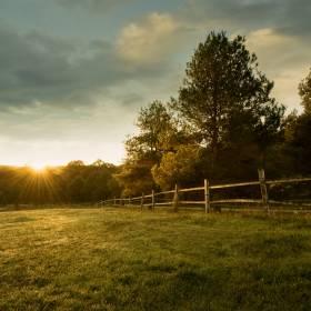 Latami żyli w całkowitej izolacji. 58-letni mężczyzna przetrzymywał na farmie 7 osób