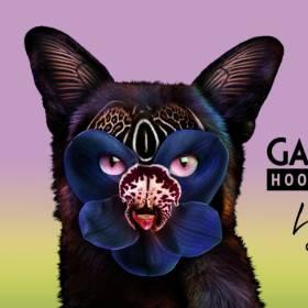 "Już dziś Galantis & Hook N Sling – ""Love On Me"" w RMF MAXXX!"