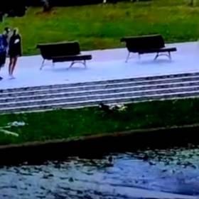 Spacerowiczka ruszyła na pomoc tonącym kociętom, które wrzucono do rzeki w plastikowym worku! [WIDEO]