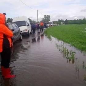 """""""Wszystkie psy są bezpieczne""""! Sukces akcji ratowania zwierząt z zalanego schroniska!"""