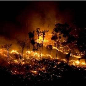 Amazonia. Od trzech tygodni płonie las deszczowy