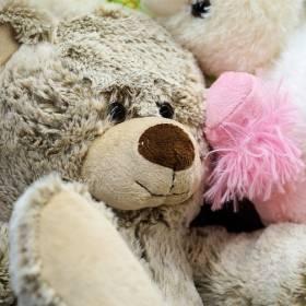 Tragedia w Szkocji: Pluszowy miś udusił śpiącą dziewczynkę