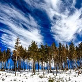 Spadł pierwszy śnieg. Internauci uwiecznili go na zdjęciach i filmach