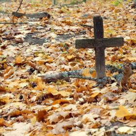 Pierwszy ekologiczny cmentarz powstał w Paryżu
